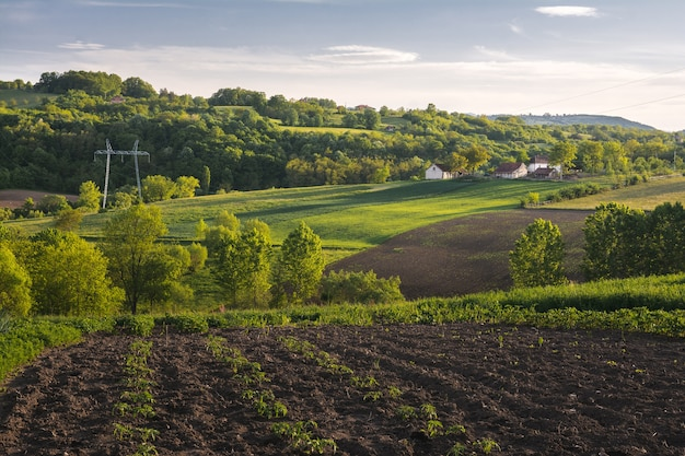 Beautiful horizontal shot of a green field with bushes, trees, and small houses in the countryside
