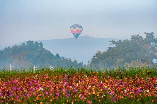 Beautiful hot air balloon  view on colorful sunset background above trees next to the mountains