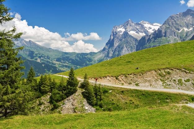 Beautiful idyllic alps landscape and trail, mountains in summer, switzerland