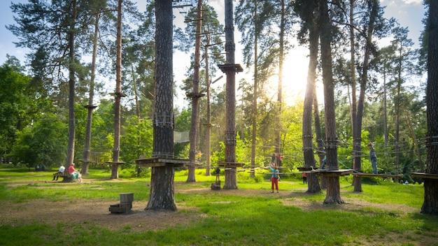 公園の松の木の間に吊るされたロープと橋の美しい画像。子供も大人も森の冒険都市