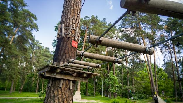 公園の松の木の間にぶら下がっているロープや橋の美しい画像。森の子供と大人のためのアドベンチャーシティ