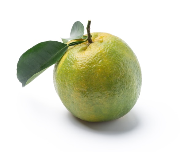 Beautiful immature green tangerine with leaves isolated on white background, clipping path, cut out, close up.