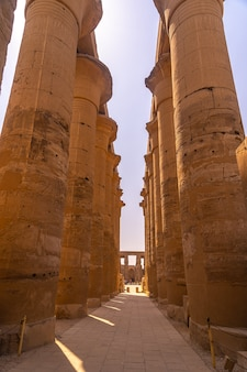 Beautiful interior with its columns in one of the most beautiful temples in egypt.