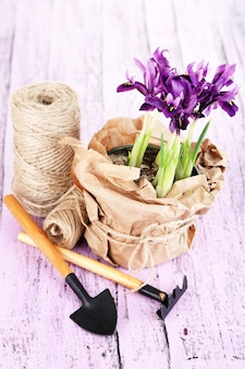 Beautiful irises and gardening tools on wooden table