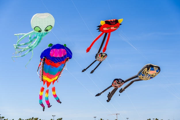 Beautiful kites with original shapes flying