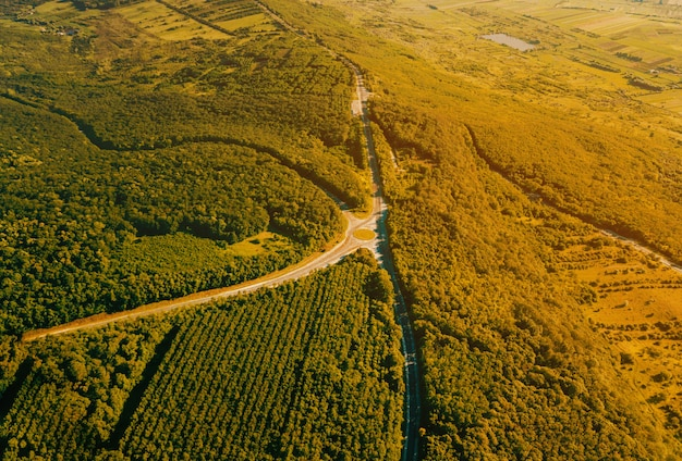 Beautiful ladscape photo from drone, top view of forest with asphalt road during sunset in a summer time