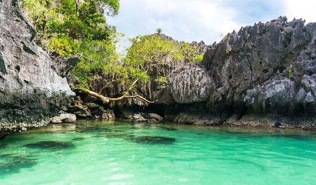 Красивая лагуна с кристально чистой бирюзовой водой в окружении высоких скал на острове палаван, филиппины.