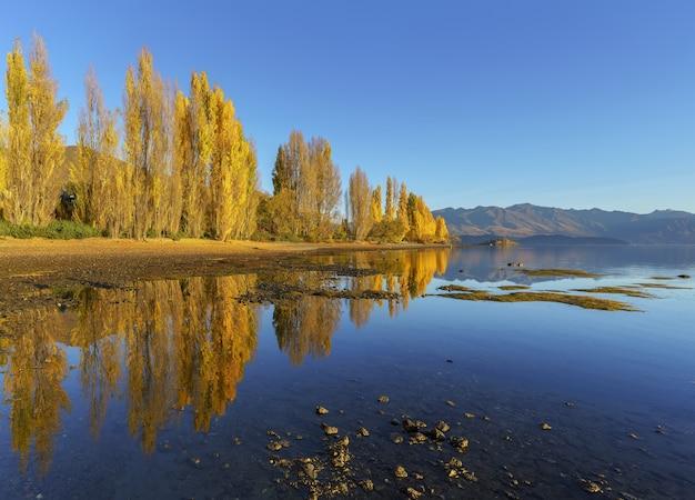 가을 아침에 반사와 아름다운 호수 와나카, 와나카, 뉴질랜드 남섬