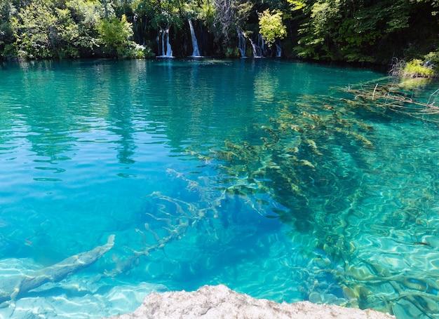 맑은 물과 바닥에 마른 나무가있는 아름다운 호수 (크로아티아 플리트 비체 호수 국립 공원)