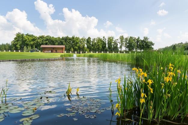 Красивое озеро Premium Фотографии