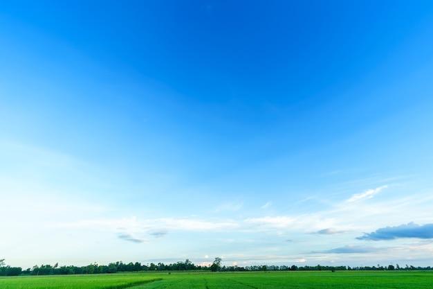 아름 다운 땅 공기 분위기 밝은 푸른 하늘 흰 구름과 추상 분명 텍스처.