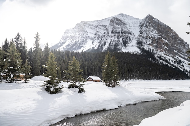 Beautiful landscape in banff national park in winter.banff national park, alberta, canada