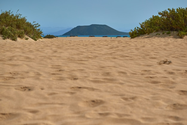 Beautiful landscape of golden sand on the shore