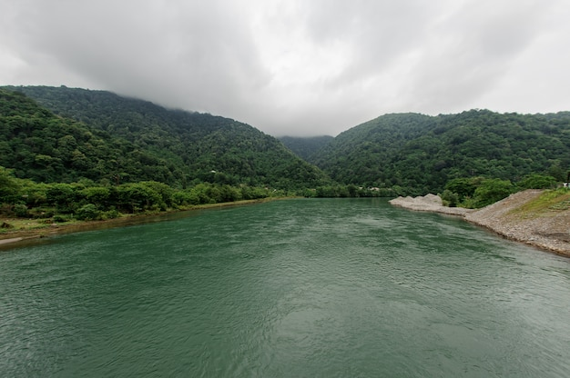 Beautiful landscape of the green river surrounded by a bank of trees