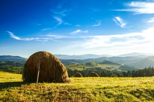 Beautiful landscape of haystacks in field.
