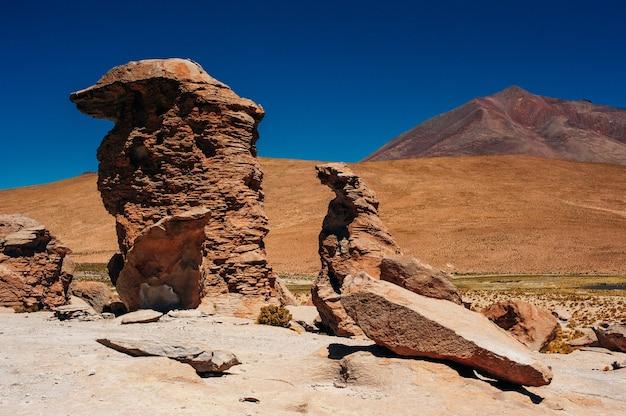 Красивый пейзаж национального заповедника лос фламенко.