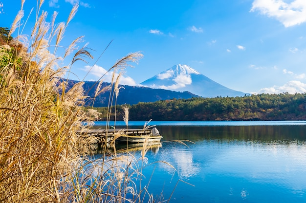 Beautiful landscape of mountain fuji