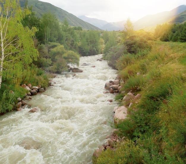 晴れた夏の天候の渓流にあるカザフスタンのアルマトイ市の近くの美しい風景。観光と旅行のコンセプト。