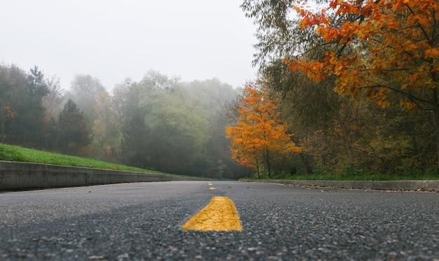アスファルト道路のある秋の霧の公園の美しい風景。