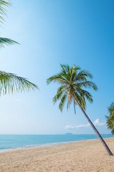 夏の熱帯のビーチ(海景)のココナッツ椰子の木の美しい風景。夏の背景の概念。