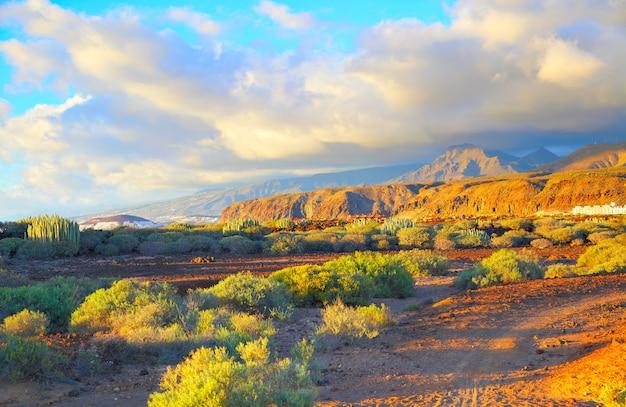 Красивый пейзаж пустынной местности на тенерифе, канарские острова