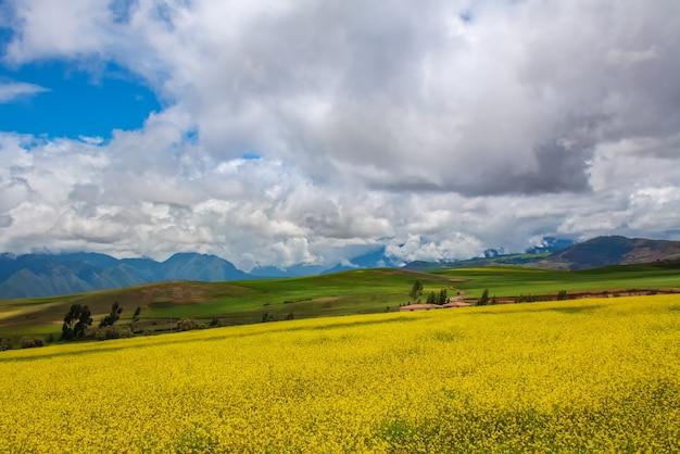 南米ペルーの野原、牧草地、山々の美しい風景