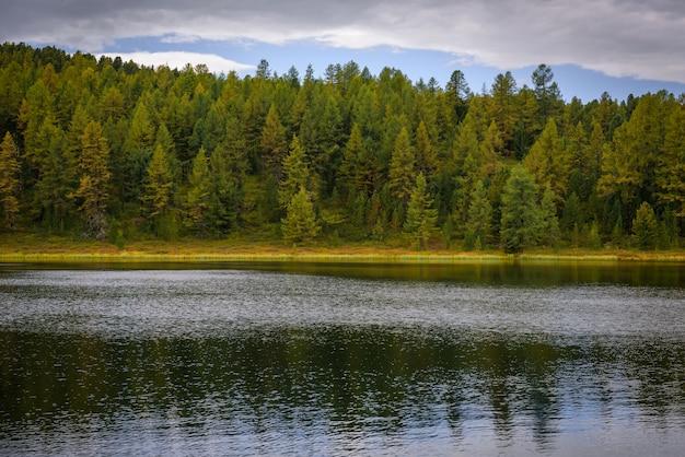 針葉樹林が密集した高山湖の美しい風景。国立公園、アルタイ保護区、シベリア、ロシア。