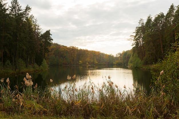 大自然の美しい風景