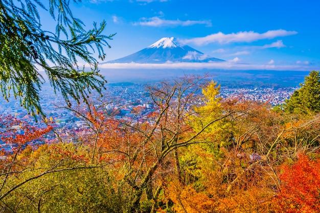 Красивый пейзаж горного фуджи вокруг дерева кленовых листьев в осенний сезон