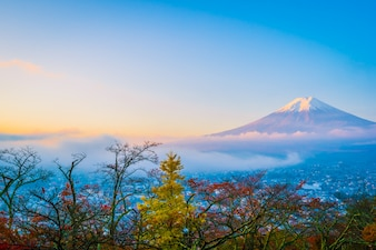 Beautiful landscape of mountain fuji around maple leaf tree in autumn season