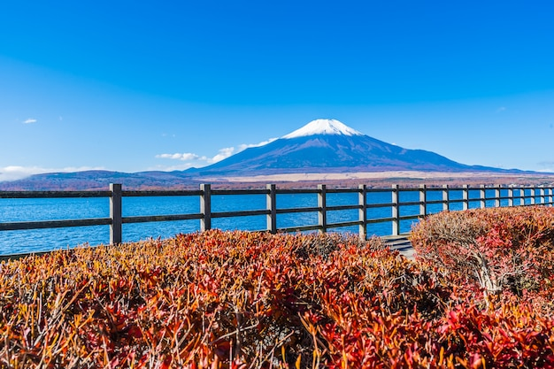 Красивый пейзаж горы фудзи вокруг озера яманакако