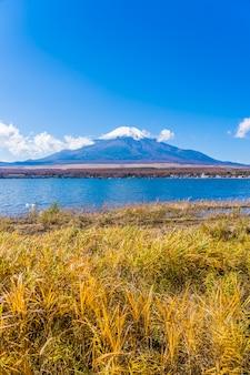 山中湖周辺の富士山の美しい風景