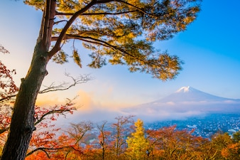 Beautiful landscape of mountain fuji with chureito pagoda around maple leaf tree in autumn season