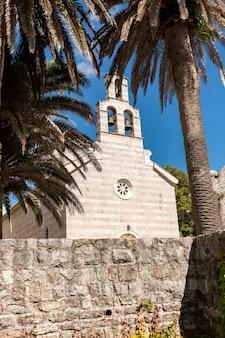 古い大聖堂の隣に生えるヤシの木の美しい風景