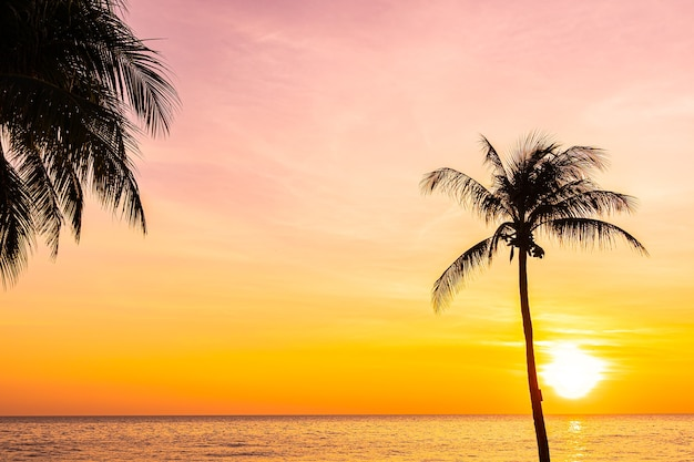 일몰 또는 일출 실루엣 코코넛 야자수와 바다 바다의 아름다운 풍경