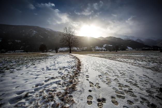 ハイランド アルプスの谷の雪に覆われた道の美しい風景