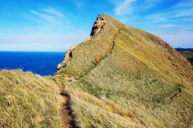 ニュージーランドのオーシャンビーチの美しい風景。