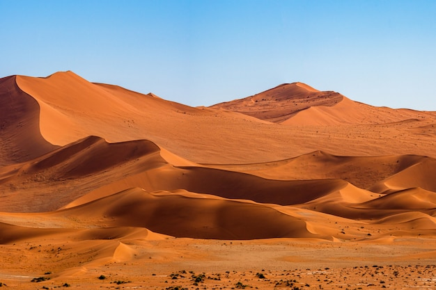 Beautiful landscape of orange sand dune orange sand at namib desert in namib-naukluft national park sossusvlei in namibia. Free Photo
