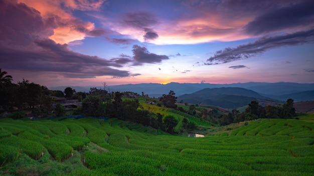 Красивый пейзаж. рисовые поля в деревне pong pieng, mae chaem, чиангмае, таиланде.
