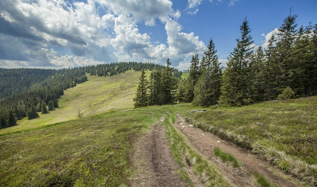 Beautiful landscape at the pohorje hills in slovenia