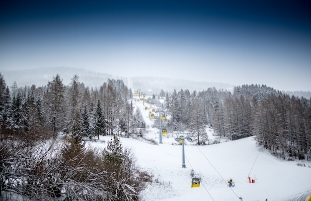 Beautiful landscape of ski lift on slope at mountain covered by pines