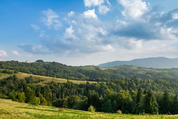 Beautiful landscape of summer carpathian mountains
