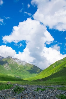 Beautiful landscape of summer mountain valley