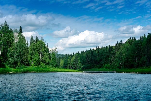 Красивый пейзаж летней реки с дикими лесистыми берегами
