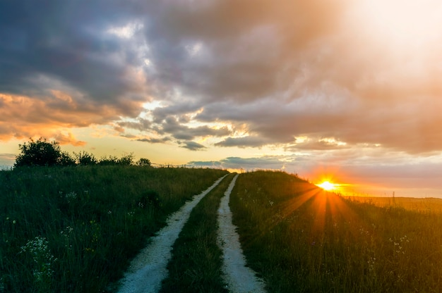 Beautiful landscape at sunset or sunrise, narrow ground road stretching through green grassy blooming meadow to distant horizon lit by bright rays of yellow low setting sun under cloudy evening sky.