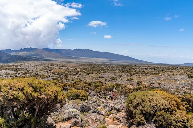 Bellissimo paesaggio della tanzania e del kenya