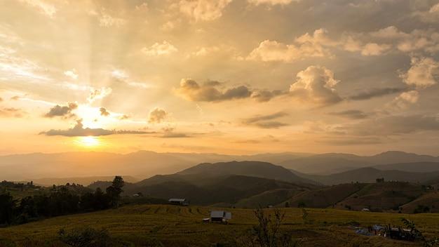 タイ、チェンマイの棚田の美しい風景。太陽光線のある棚田の田んぼの苗。