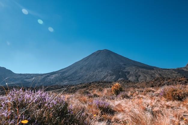 푸른 하늘, 북 섬, 뉴질랜드와 아름 다운 날에 통가리로 횡단 트랙의 아름 다운 풍경보기 ..