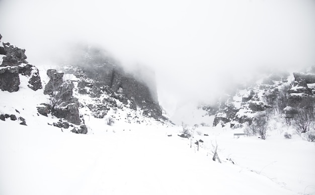Beautiful landscape. winter. foggy day. mountain covered in snow
