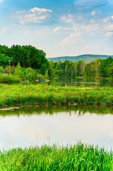 Красивый пейзаж с озером в окружении деревьев русская природа